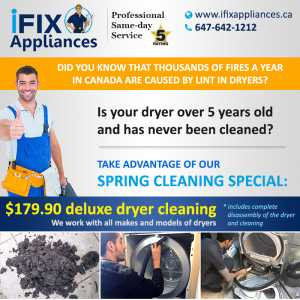 professional lint cleaning special discount